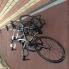 ユーザー CYCLESTYLIST の写真