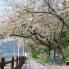 ユーザー gallerytake の写真